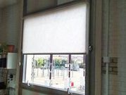 Cortinas | decoración